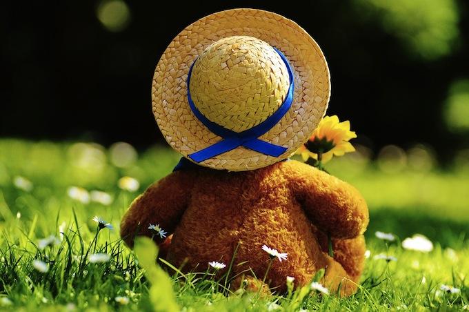 teddy-bear150805